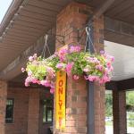 Comfort Inn Flowers
