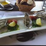 oesters op ijs en eetbaar zeewier als voorgerecht