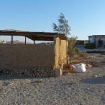 Photo of Desert Shade