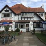 Great family dog friendly pub