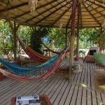 Hammocks at the eco hostel Algarve
