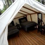 Intimate Suite