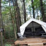 Fox cabin