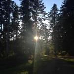 Soleil de septembre