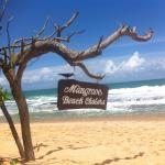 Photo of Mangrove Beach Cabanas & Chalets