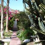 Walkways lead through gardens.