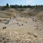Steinbruch Fur Fossiliensammler