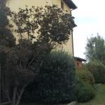 Photo de Borgo Mandoleto