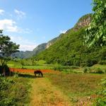 Valle de Vinales Photo