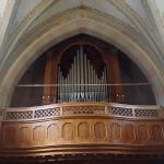 L'organo a canne