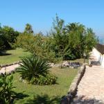 il giardino e la terrazza