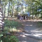 surrounding huts