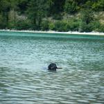 un plongeon dans le lac pour Napoléon