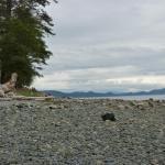 Beach at Dunroven