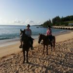 Bermuda Trail Rides