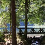 Der Feldsee, 10 min vom Raimartihof