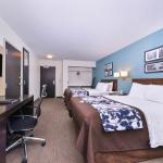 Guest Room-2 Queen Accessible