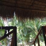 Magic Garden Resort Foto