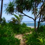 Direct beach access from Cottage #3