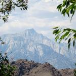View of Mount Whitney from the Visitor Center