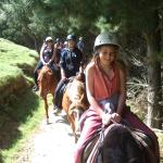 A young group of customers on a trek