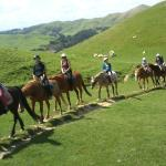 Customers out and about on a horse trek