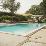 Sehr entspannter Pool