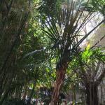 Landscape - Sunroom Lounge Picture