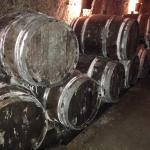 Loads of Wine
