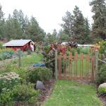 Canyon Farms RV Park Foto