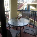 Rainbow lorikeets enjoy their breakfast on our balcony.