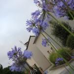 Photo de Lagrange Prestige Residence Le Hameau de Peemor Pen