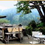 Photo de Restaurant Steirereck