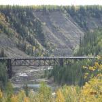 The Bridge From Afar