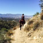 Running Horse Ranch