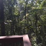 Mountain Top Lodge at Dahlonega Foto