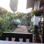 View from Breakfast table to Garden