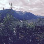 Ferienpark Waldpension Putz Foto