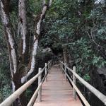 Parque Estadual da Lapa Grande