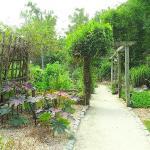 adult garden