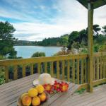 View from Nikau cottage