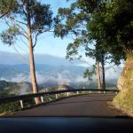 Carretera hasta Arriondas (AS-342)