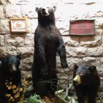 Three Bear Restaurant Foto