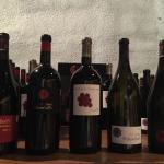Selection of Viladellops wines