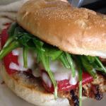 chicken roma sandwich
