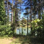 Photo de Camping du Lac de Nabeillou