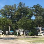 Oakdale Park Photo