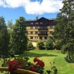 ภาพถ่ายของ Hotel Forton