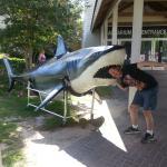North Carolina Aquarium on Roanoke Island Foto