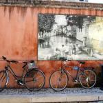 Treviso ist eine Radfreundliche Stadt